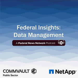 Federal Insights: Data Management